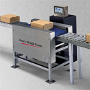 In Motion Conveyors